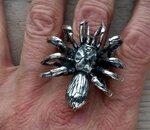 zilveren ring met spin
