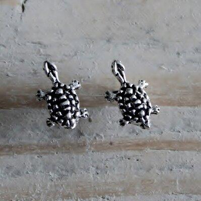 oorknopjes schildpadjes zilver