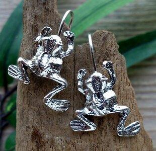 oorbellen kikker zilver