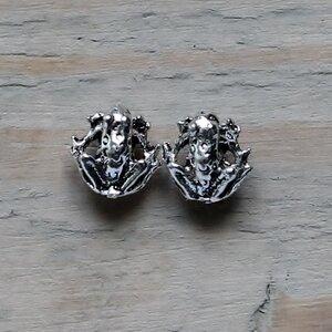 oorknopjes kikker zilver